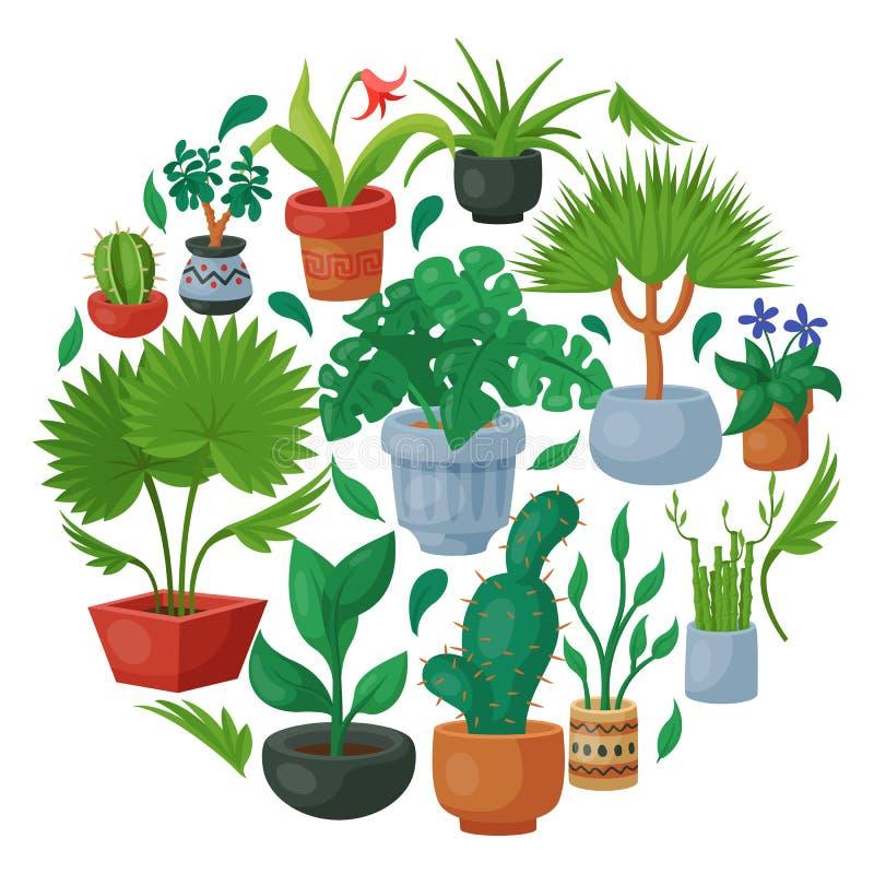Ejemplo interior del vector del modelo de la ronda de la floricultura de las flores de la casa El cultivar un huerto de la decora ilustración del vector