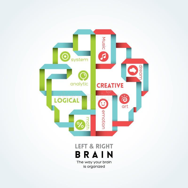 Ejemplo izquierdo y derecho de la función del cerebro stock de ilustración