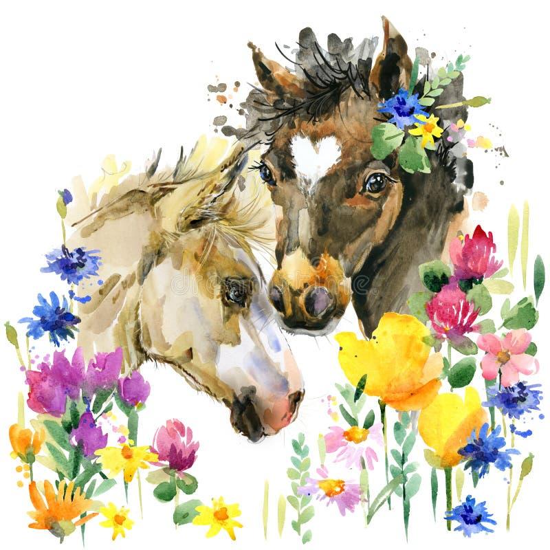 Ejemplo lindo de la acuarela del potro Animal del campo stock de ilustración