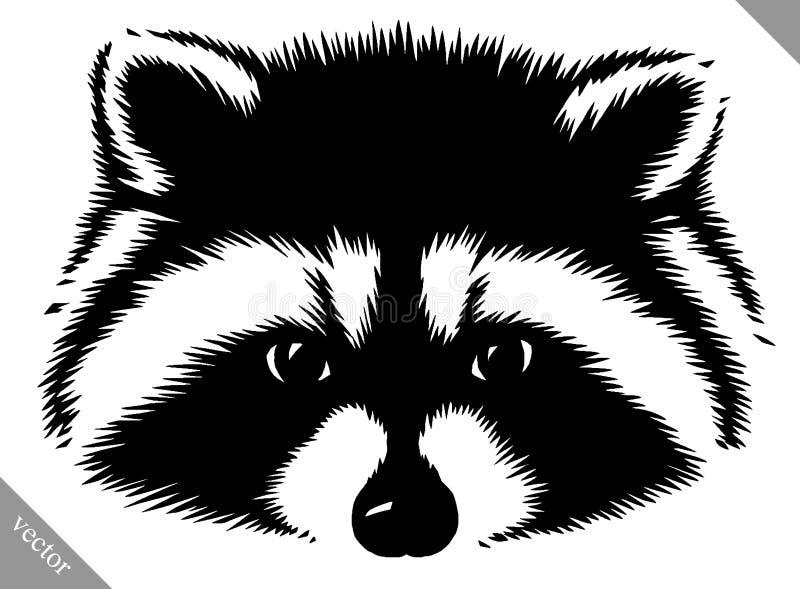 Ejemplo linear blanco y negro del vector del mapache del drenaje de la pintura ilustración del vector