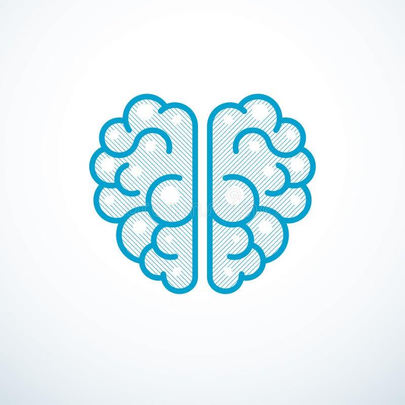 Ejemplo, logotipo o icono anatómico humano del vector del cerebro ilustración del vector