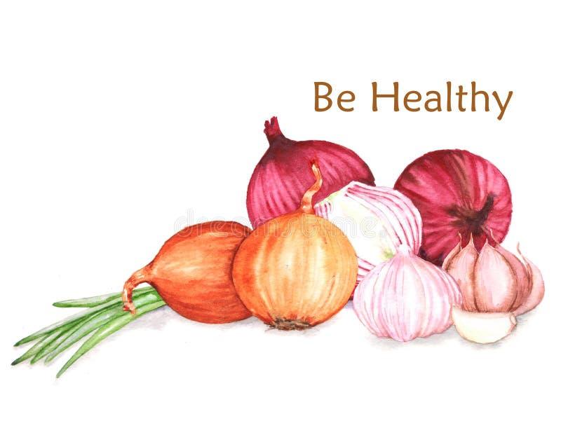 Ejemplo a mano de la comida de la acuarela de productos orgánicos libre illustration