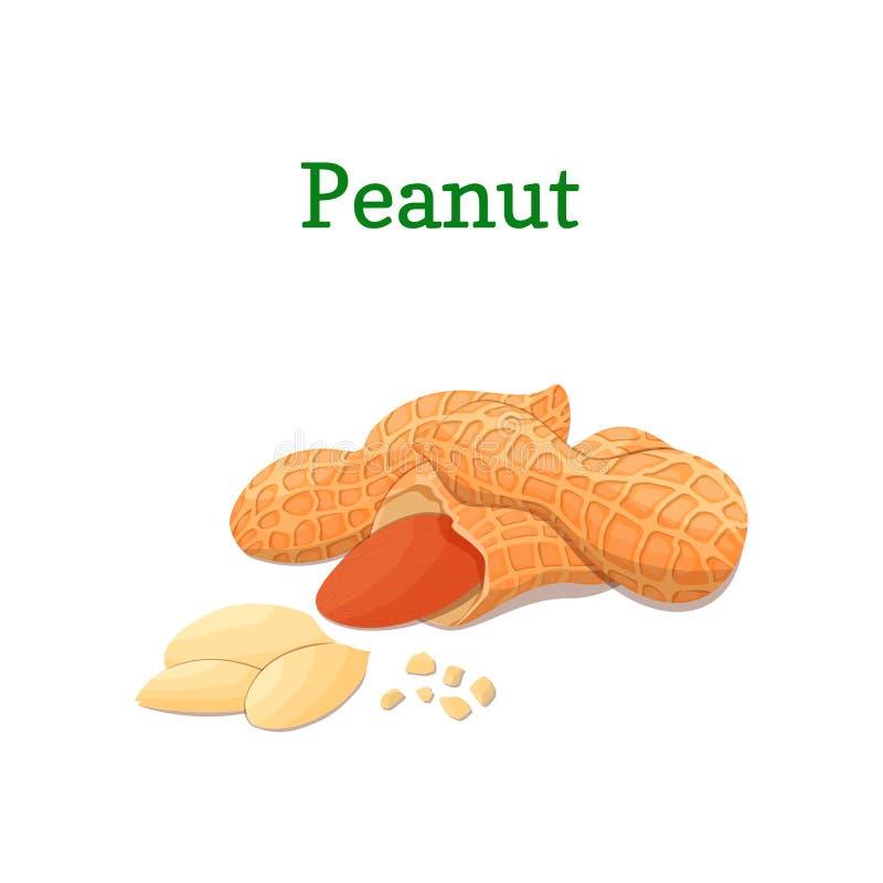 Ejemplo nuts del vector del cacahuete de un cacahuete del puñado aislado en el fondo blanco puede ser utilizado como diseño de em libre illustration