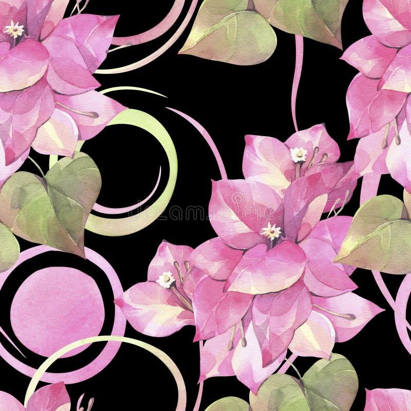 Ejemplo pintado a mano de la acuarela Modelo inconsútil con las flores de la buganvilla y de elementos abstractos ilustración del vector