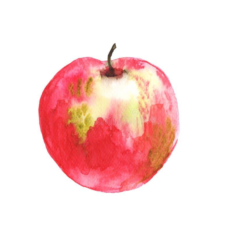 Ejemplo pintado a mano del Watercolour del uso rojo de la manzana para el artículo de revista acerca de la decoración sana del we ilustración del vector