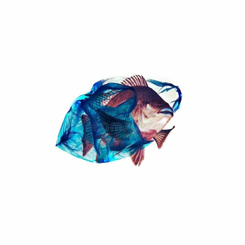 Ejemplo plástico del océano libre illustration