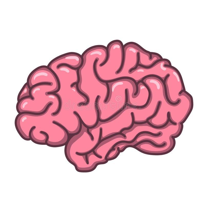 Ejemplo plano del cerebro humano del estilo stock de ilustración