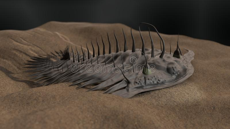 Ejemplo prehistórico del trilobite 3d ilustración del vector