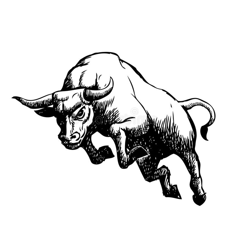 Ejemplo a pulso del bosquejo del toro de carga libre illustration