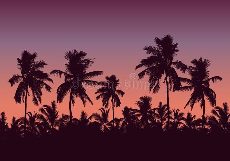 Ejemplo realista de un bosque de palmeras y de los tops de los árboles Cielo rosado púrpura con el espacio para el texto, vector