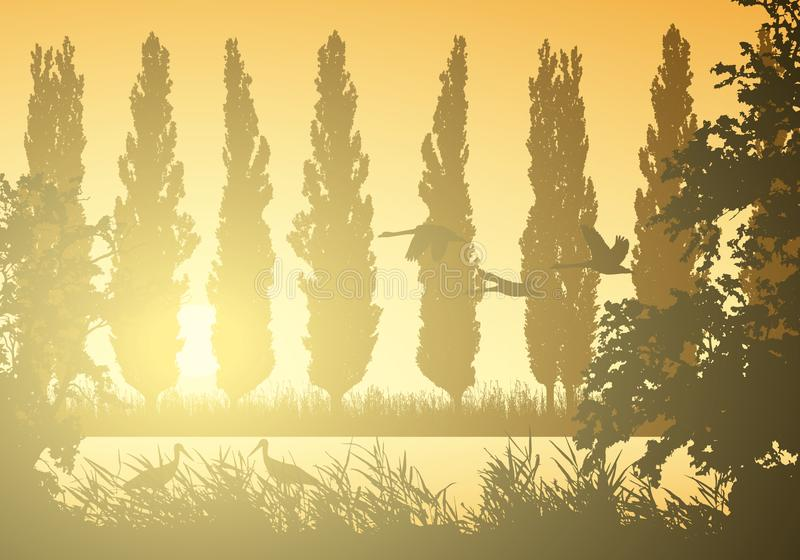 Ejemplo realista del paisaje con los humedales y el pantano Cañas e hierba con los árboles, álamos y pájaros de vuelo Cigüeñas y  stock de ilustración
