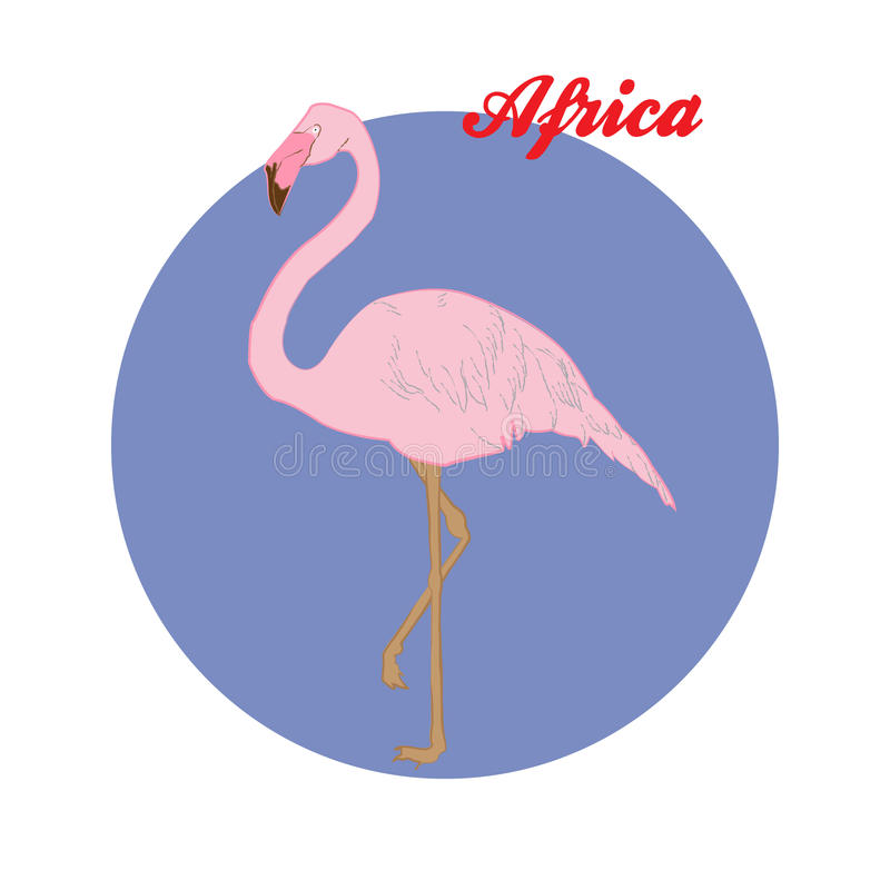 Ejemplo rosado del flamenco en el fondo del círculo stock de ilustración