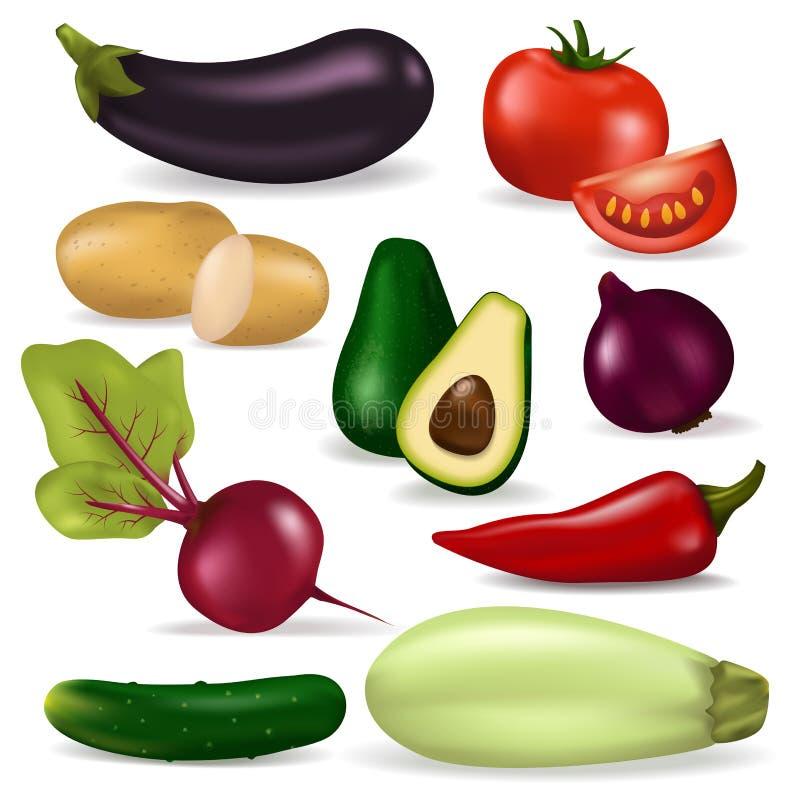 Ejemplo sano vegetariano fresco de la agricultura de las verduras 3d del vegano de la naturaleza del vector realista del alimento libre illustration