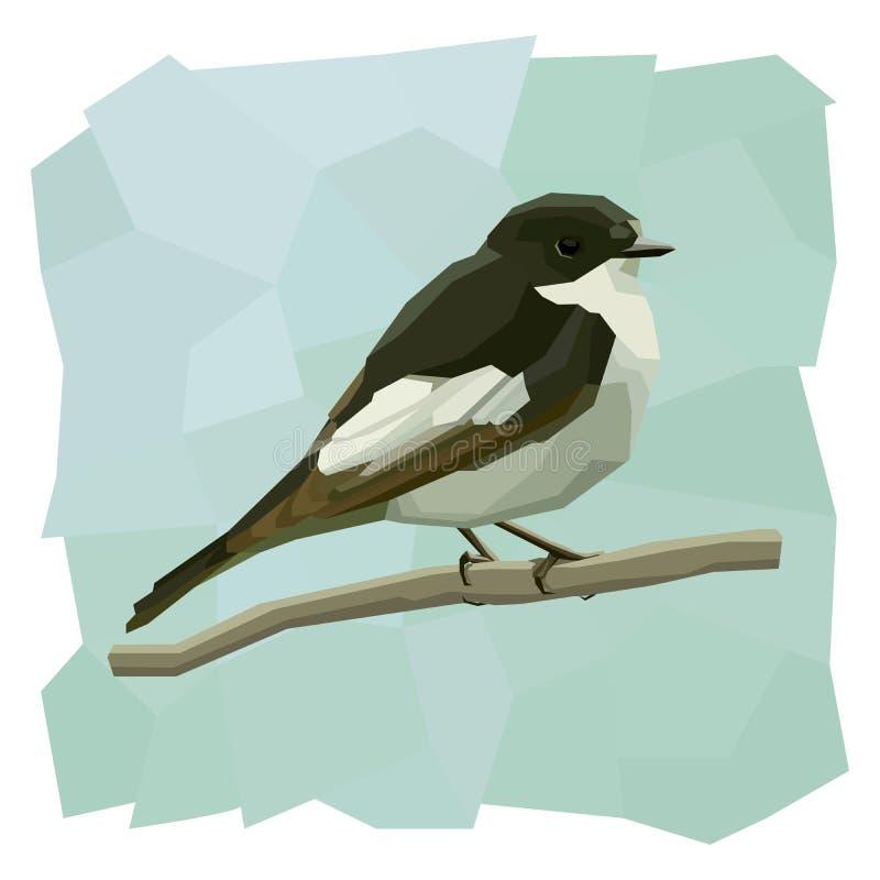 Ejemplo simple del vector del pájaro de varios colores del cazamoscas stock de ilustración