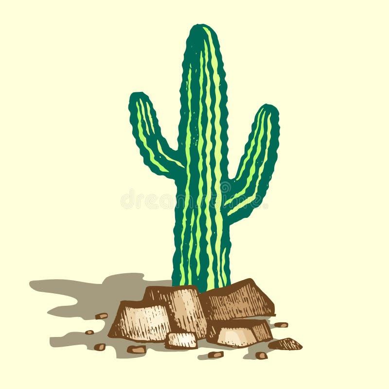Ejemplo solo del cactus libre illustration