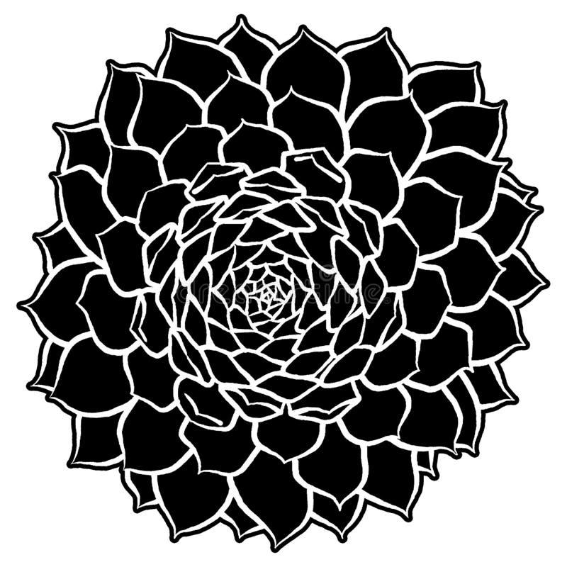 Ejemplo suculento de la silueta stock de ilustración