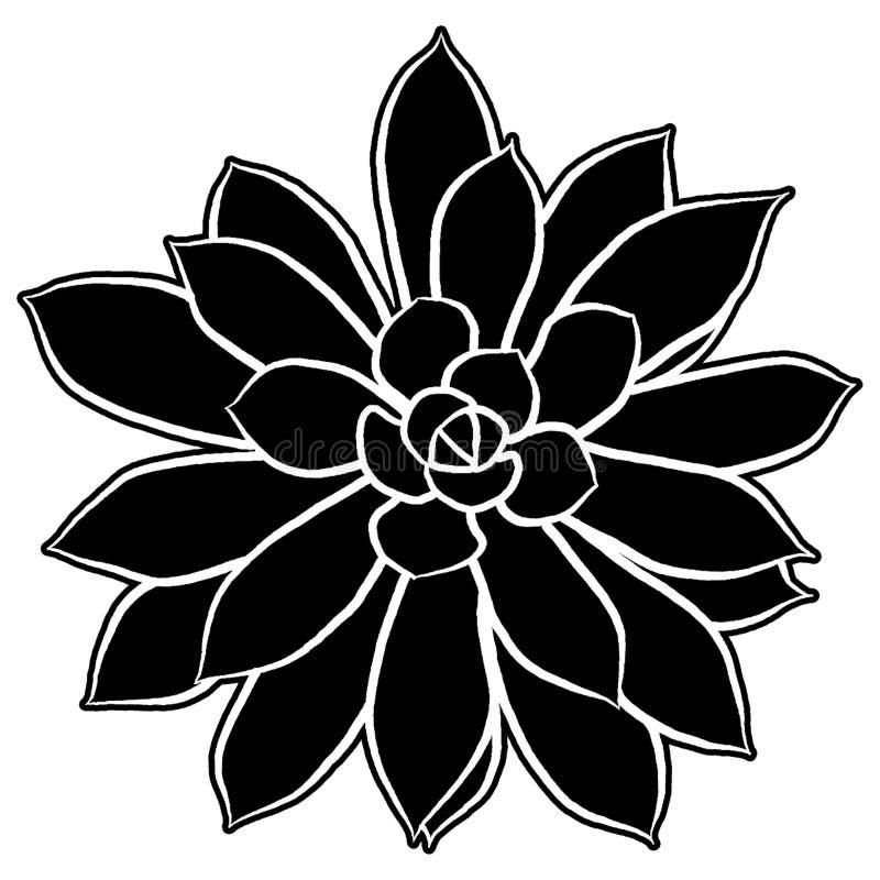 Ejemplo suculento de la silueta ilustración del vector