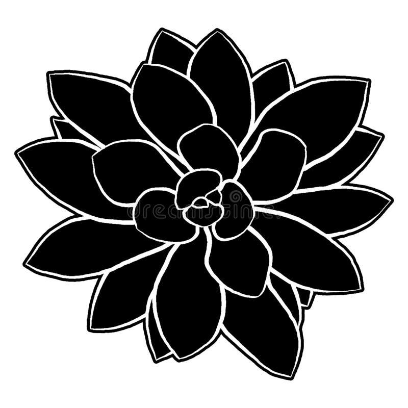 Ejemplo suculento de la silueta libre illustration