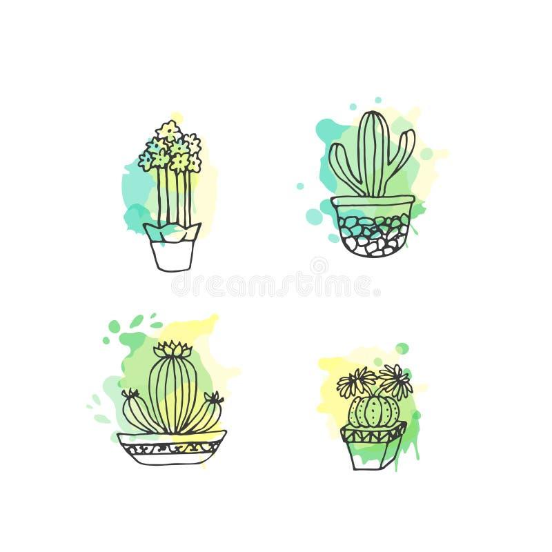 Ejemplo suculento El sistema dibujado mano del cactus del vector con la pintura salpica Cactus y en plantas de la puerta en potes stock de ilustración