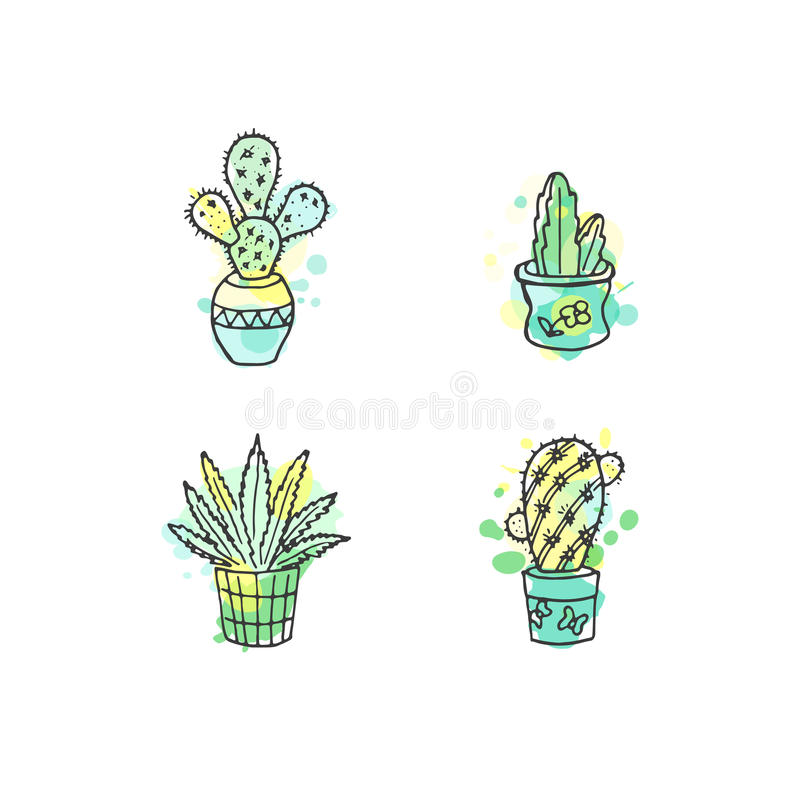 Ejemplo suculento El sistema dibujado mano del cactus del vector con la pintura salpica Cactus y en plantas de la puerta en potes ilustración del vector