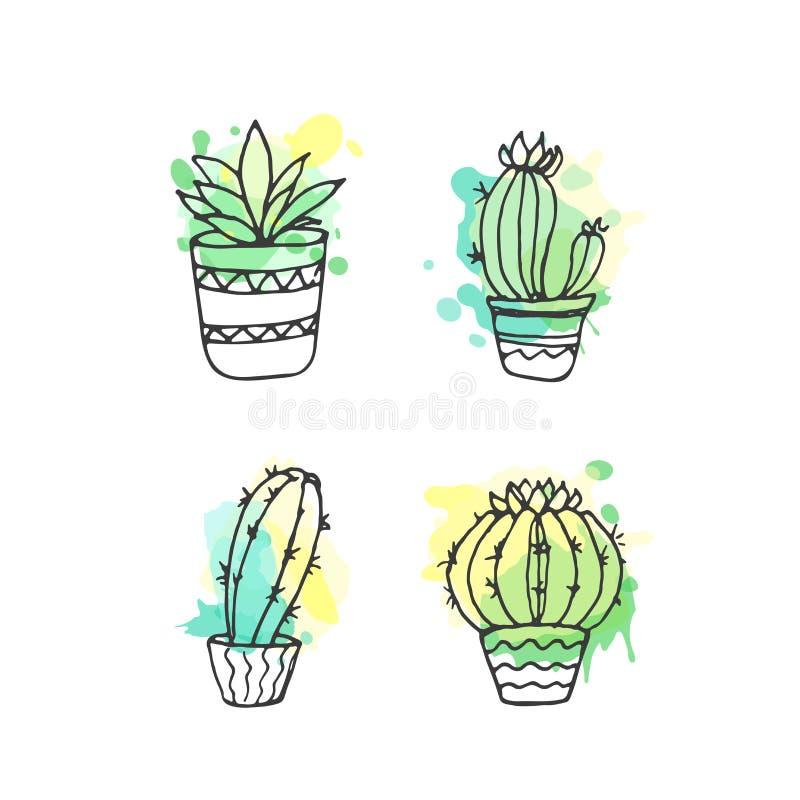 Ejemplo suculento El sistema dibujado mano del cactus del vector con la pintura salpica Cactus y en plantas de la puerta en potes libre illustration