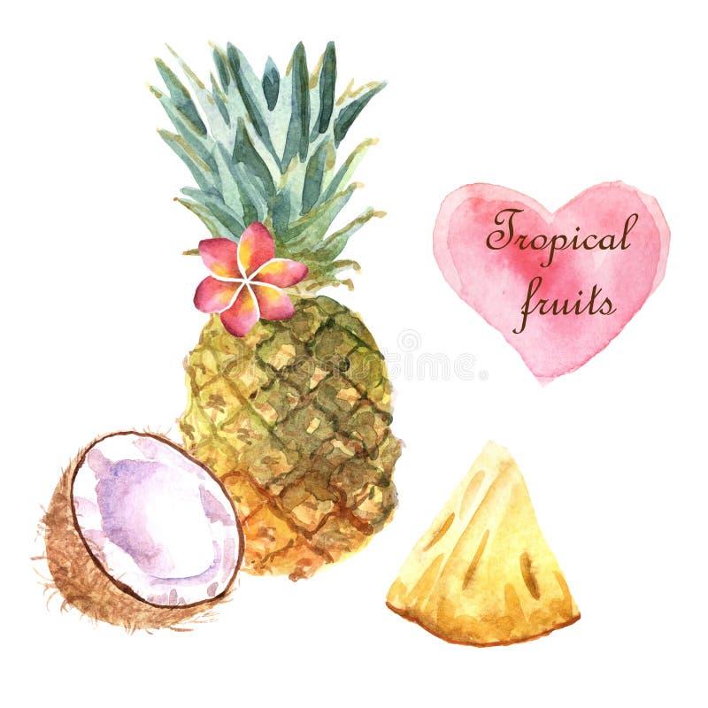 Ejemplo tropical de la acuarela con la piña y el coco en el fondo blanco libre illustration
