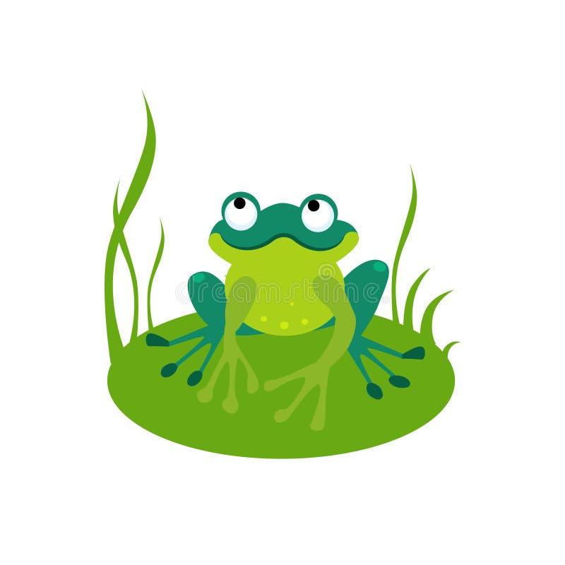 Ejemplo verde del vector de la rana de la historieta stock de ilustración