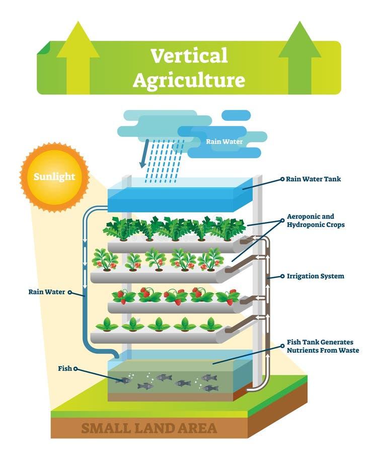 Ejemplo vertical del vector del esquema del ambiente de la agricultura Pescados y suelo libre illustration