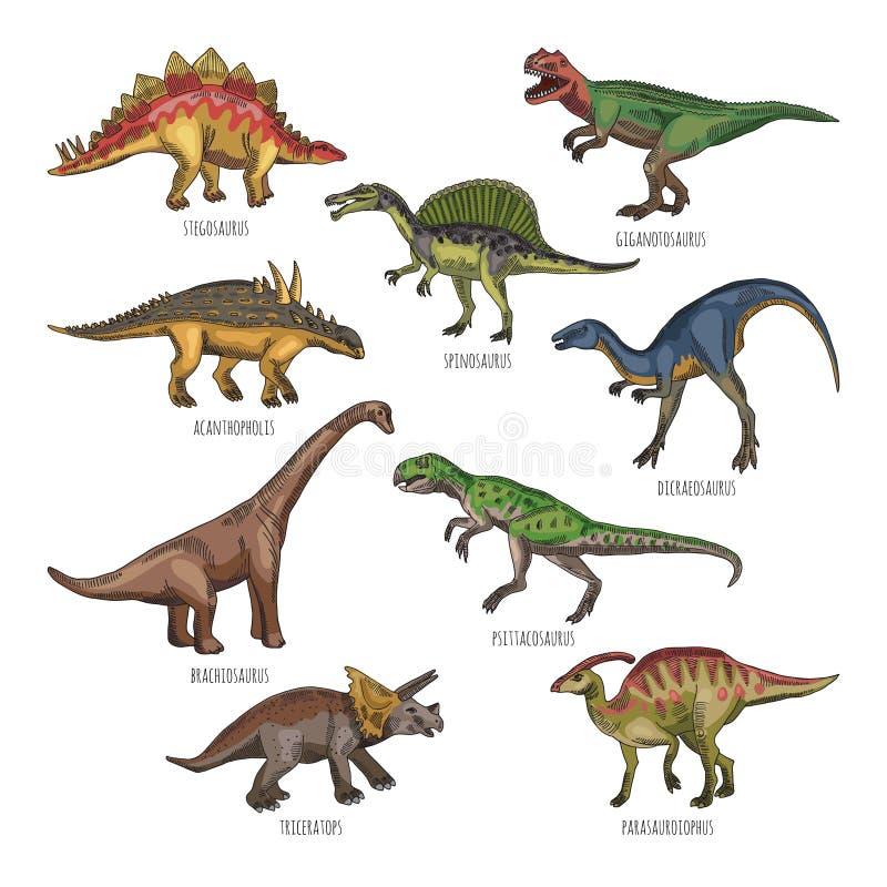 Ejemplos coloreados de diversos tipos de los dinosaurios Tiranosaurio, rex y stegosaurus stock de ilustración