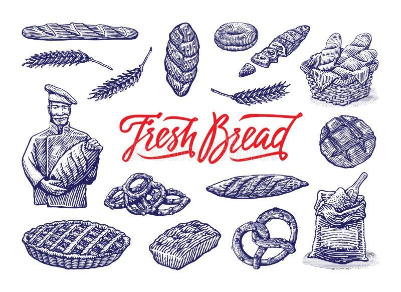 Ejemplos de la panadería del vintage fijados Ejemplo dibujado mano del grabado del vintage del color del vector fotografía de archivo