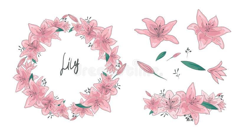 Ejemplos del vector - flores, hojas y ramas florales del sistema Guirnalda exhausta de la mano, elementos del diseño en estilo de ilustración del vector