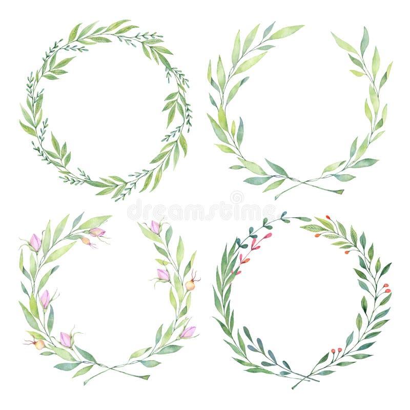 Ejemplos dibujados mano de la acuarela Laurel Wreaths Desi floral libre illustration