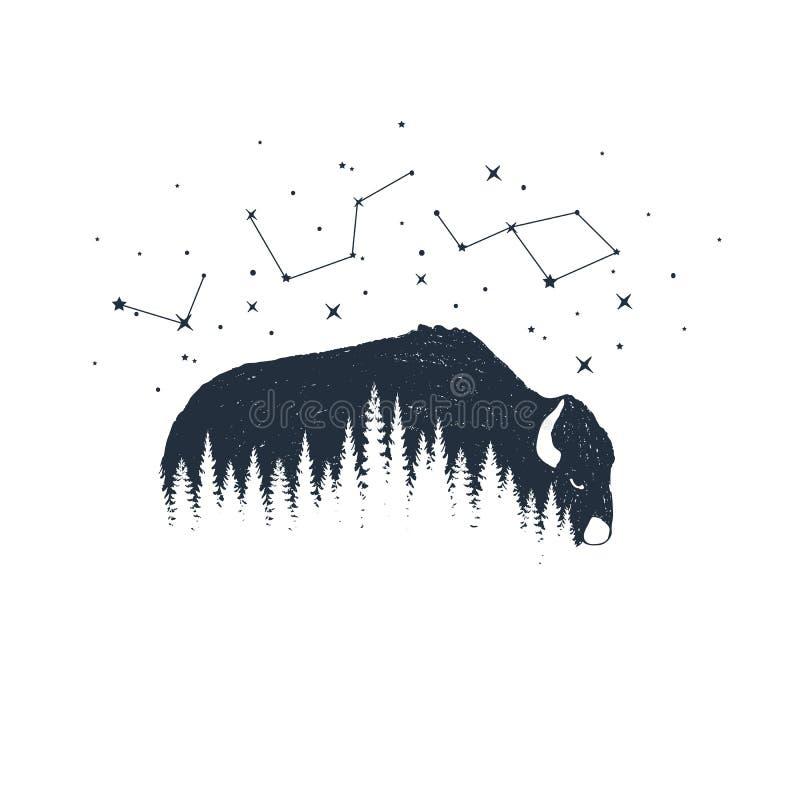 Ejemplos dibujados mano del vector del animal y de la constelación stock de ilustración