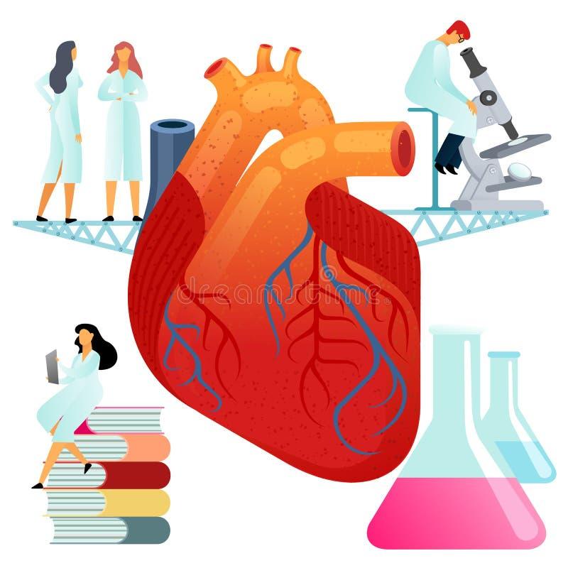 Ejemplos planos del vector, corazón humano grande en un fondo blanco ilustración del vector