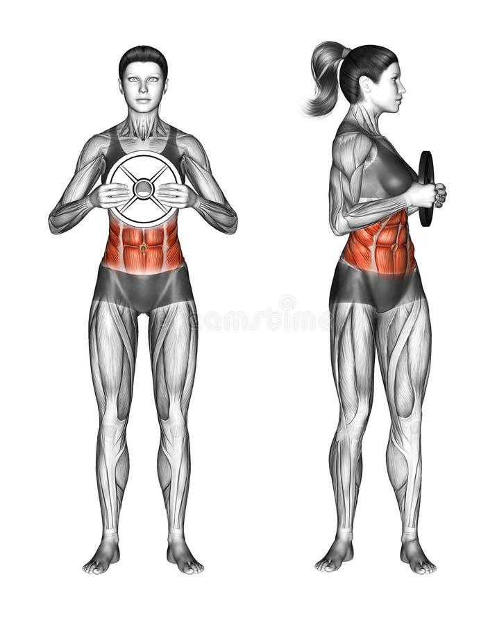Ejercicio de Fitball Torsión oblicua con la placa del peso hembra ilustración del vector