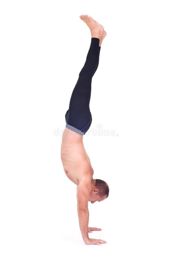 Ejercicios practicantes de la yoga: Balanza del brazo lleno - Adho Mukha Vrksasana foto de archivo
