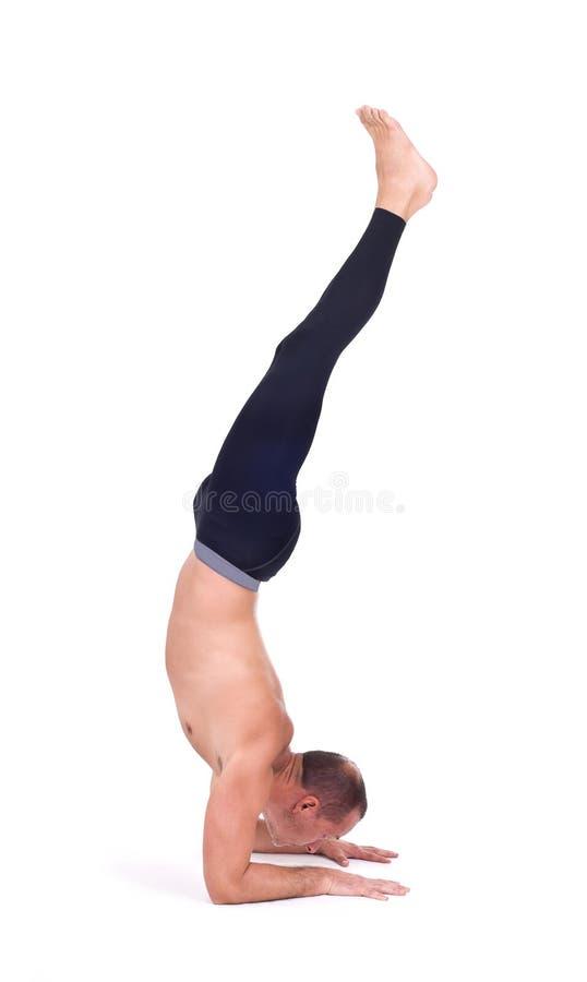 Ejercicios practicantes de la yoga:   Balanza del codo - Pincha Maryurasana fotografía de archivo