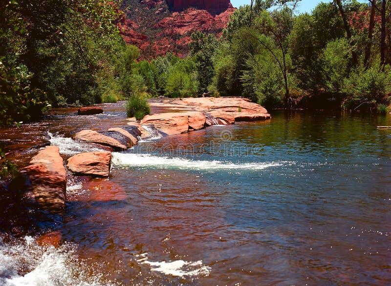 Ekliten vik Arizona royaltyfria foton