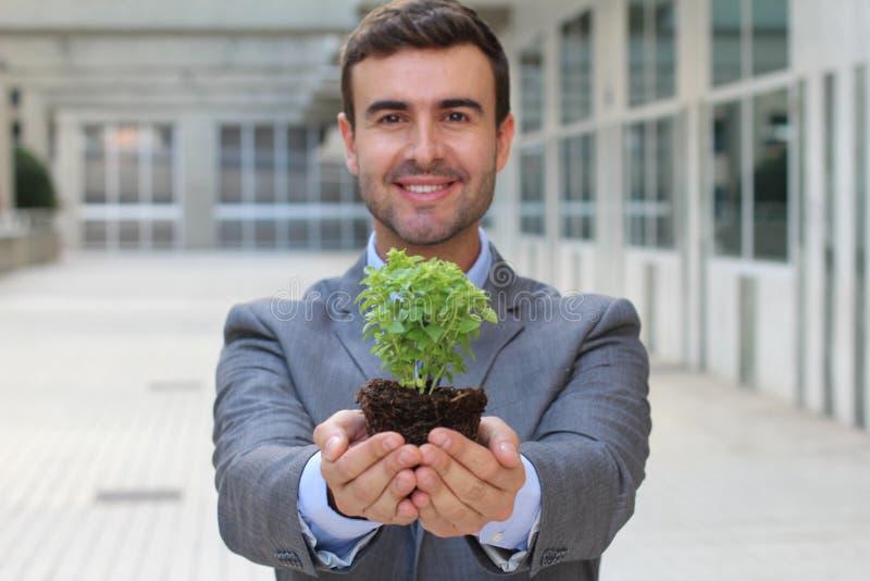 Ekolog trzyma ślicznej małej rośliny zdjęcie stock
