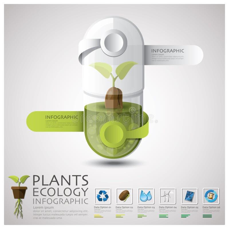 Ekologi för preventivpillerkapselväxt och miljö Infographic stock illustrationer