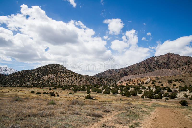 Ekologi parkerar den tempelkanjonCanon staden Colorado arkivbilder
