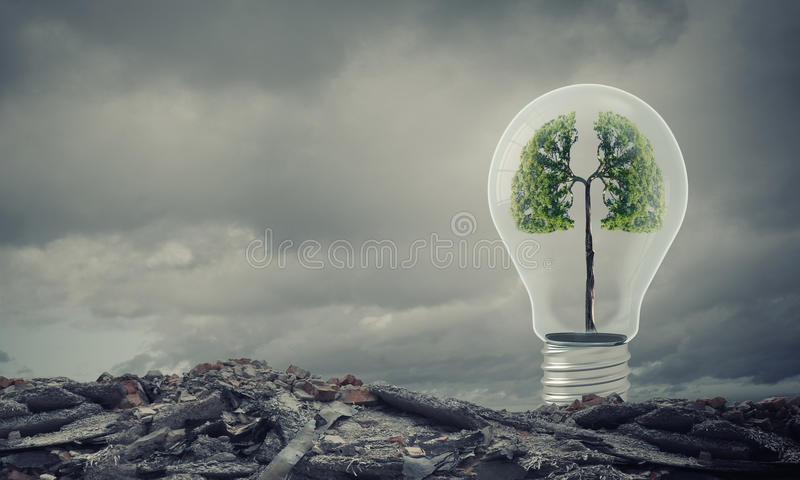 Ekologia pomysły obrazy royalty free