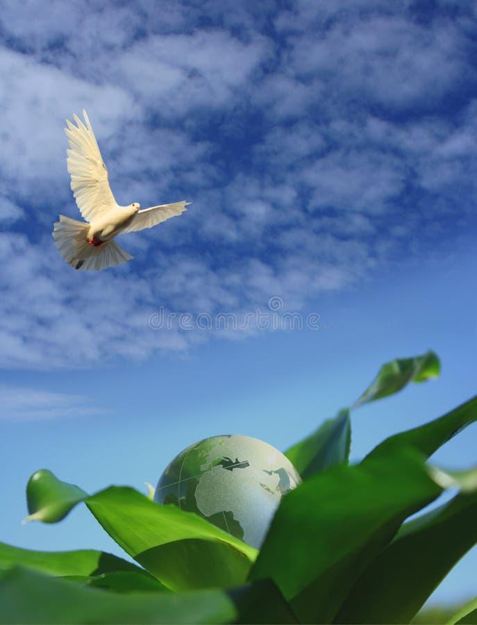 ekologiczna ilustracja wektor