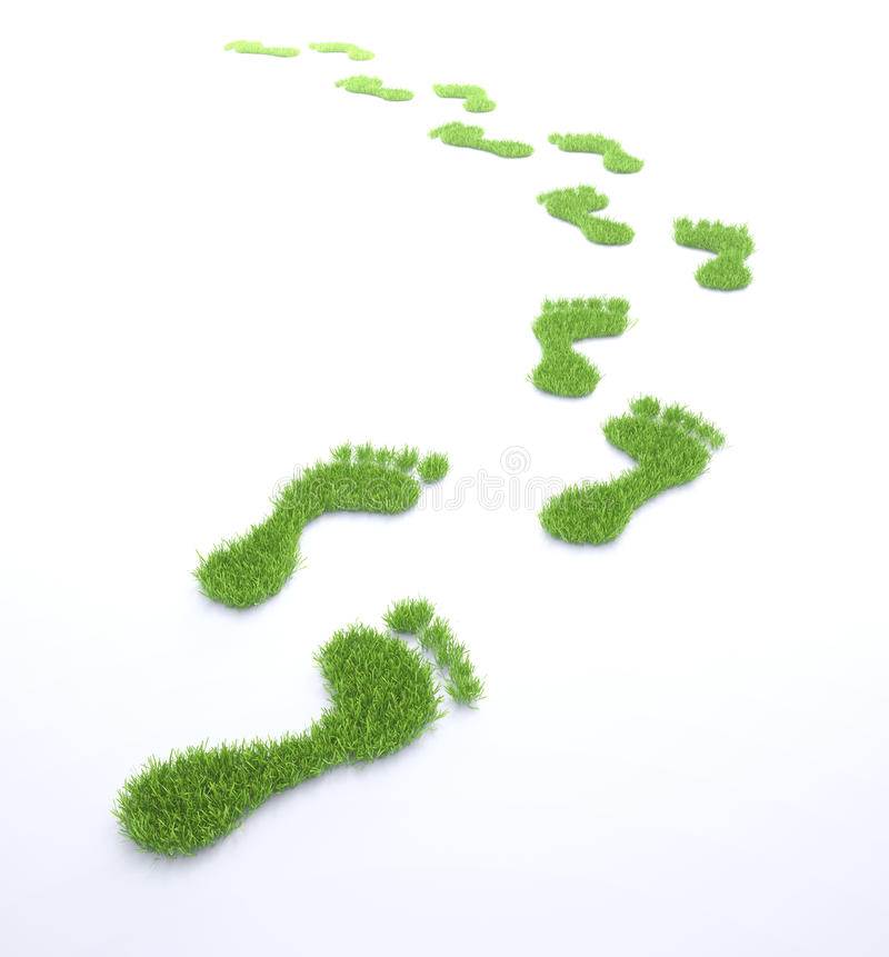 Ekologiczny odcisk stopy