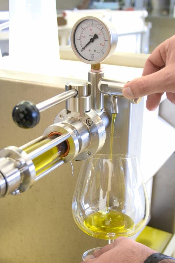 Ekologisk extra jungfrulig olivoljaproduktion med modern teknologi royaltyfri foto