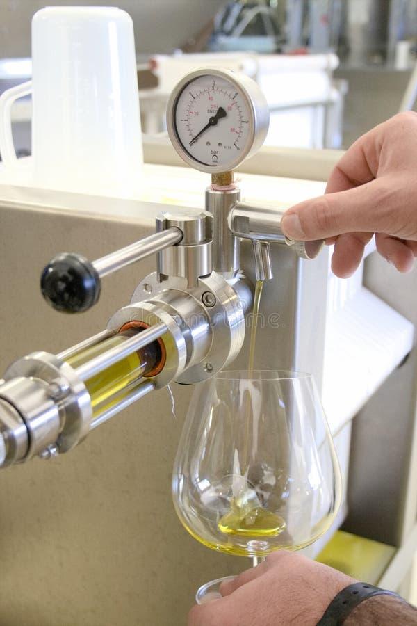 Ekologisk extra jungfrulig olivoljaproduktion med modernt teknologi, extraktion och filtrera royaltyfri fotografi
