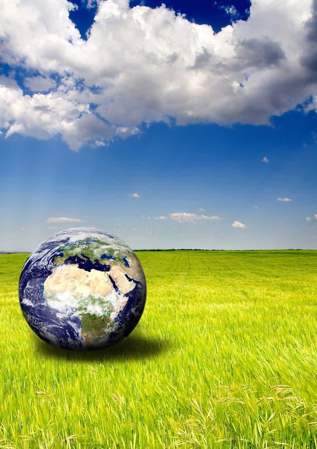 ekologisk värld arkivbilder