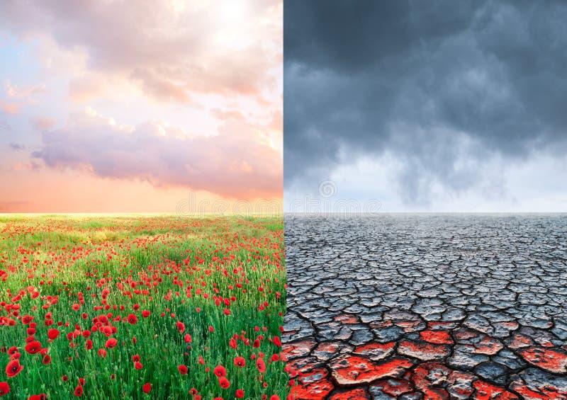 Ekologiskt begrepp med tr?det och ?ndrande landskap f?r klimat arkivbilder