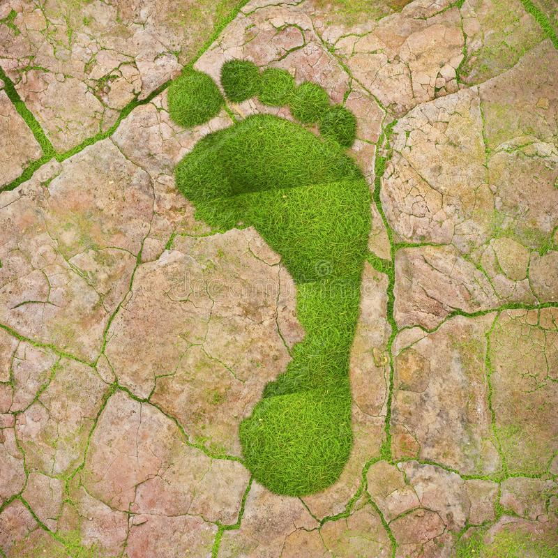 Ekologiskt fotspår. royaltyfria foton