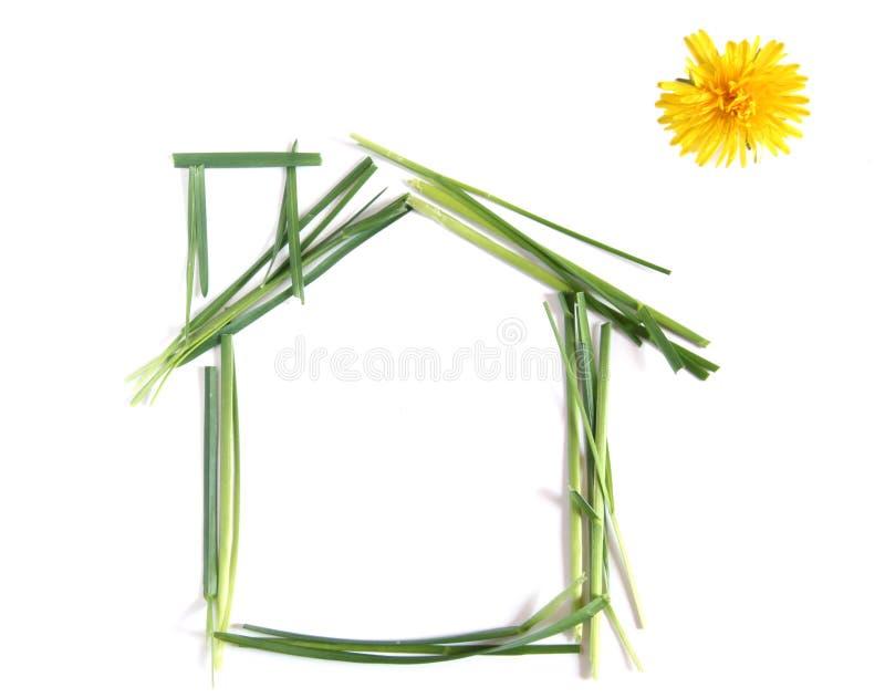 ekologiskt hus royaltyfri bild